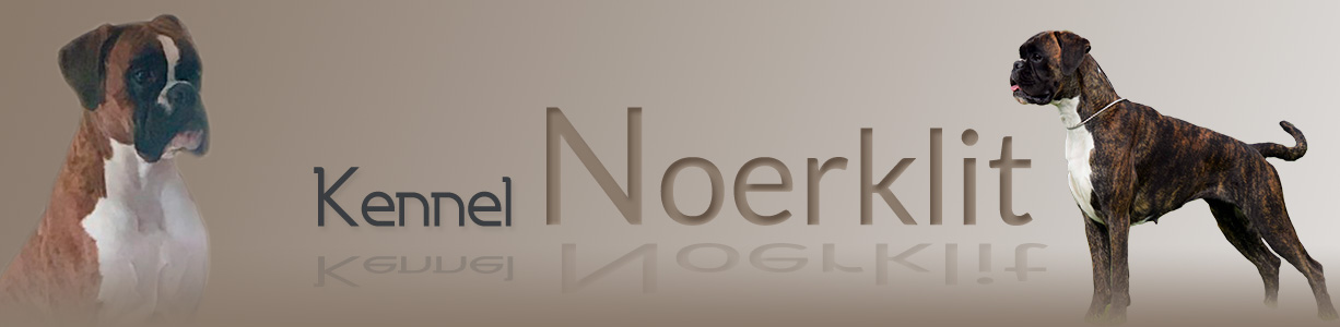 Kennel Noerklit